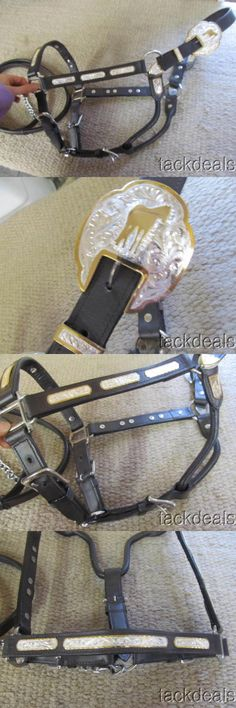 Halters 139601: New Western Horse Show Halter Gold And Silver Mexico Marked Never Used -> BUY IT NOW ONLY: $89.99 on eBay!