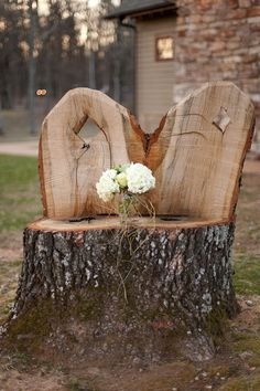 something to do with that old tree stump--
