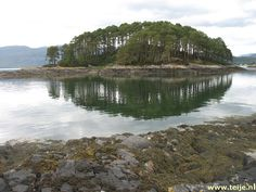 View from cottage at Craig highland beach cottage,plocton.  Plockton is one of my favorite places to visit!