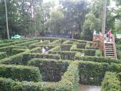 Zámek Loučeň in Loučeň, Středočeský Beautiful Park, Four Square, Activities For Kids, Vineyard, Dolores Park, Castle, Romantic, Travel, Outdoor