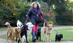 University of Missouri research shows owning a dog increases a healthier lifestyle | Daily Mail Online