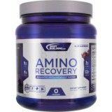 Bodybuilding.com Platinum Series Amino Recovery Review