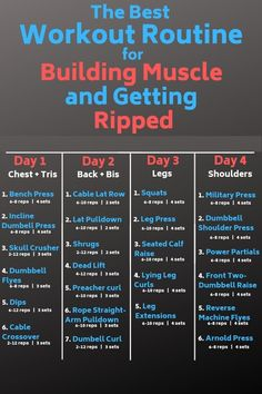 Best Gym Workout Plan Day by Day
