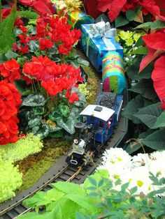 G-scale trains run the tracks at Missouri Botanical Garden's holiday train show, the Gardenland Express.