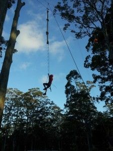"""""""Bonding Camps"""" on the cards as Queensland Grade Sevens move to High School"""