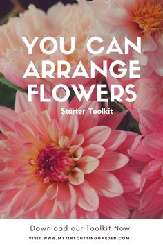 Do you love flowers? Then start doing your own flower arrangements! Download this toolkit and start your first project now.