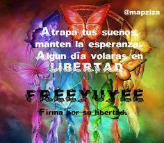 Buenas tardes bochornosas  #FREEYUYEE https://twitter.com/change_es/status/598593465916760064…