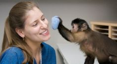 A non-profit that raises/trains Capuchin monkeys to provide in-home assistance to people living with mobility impairments. Crazy Dog Lady, Guide Dog, Healthy Pets, Therapy Dogs, Helping Hands, How To Apply Makeup, Health Advice, Have Time, Pet Care