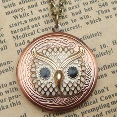 Steampunk Owl 51703 Locket Necklace Vintage Style by sallydesign, $16.00