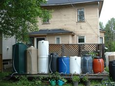 Collection of rain barrels