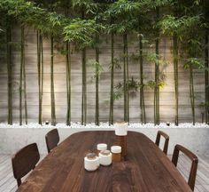 planter des bambous, planter bambou, extérieur contemporain Plus