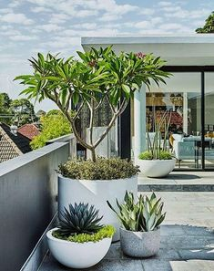 Modern garden design ideas, including contemporary paving, fences, plants & patio furniture. #GardenDesign #Landscaping #Backyard #Gardening #UrbanExteriorDesign #moderngardenfurniture #moderngardendesign #modernpatiofurniture