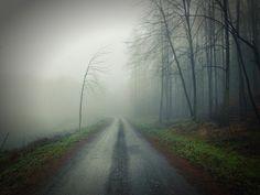 туман - Поиск в Google