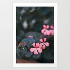 Pink Flowers  Art Print by Nicholas Smith - $15.60