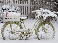 Grace & Favor: The Bike