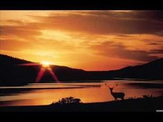 How to See Deer -- Philip Booth Beautiful Sunset, Beautiful World, Beautiful Places, Gods Creation, Sunset Photos, Most Beautiful Pictures, Serenity, Natural Beauty, Scenery