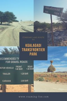 The Kalahari is a remote semi-arid wilderness, far from most cities. To get to the Kgalagadi Transfrontier Park involves a good day's travel, no matter where you come from. Africa Travel, Us Travel, Safari, Game Reserve, Nature Reserve, Great View, Travel Inspiration, Travel Ideas, Wilderness