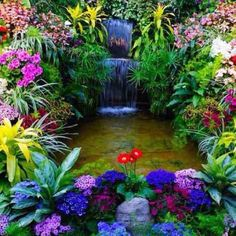 A bounty of Colors!    Medicare Annual Enrollment Begins Today, Oct 15  Free Assistance > http://MyMedicarePlus.com
