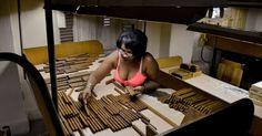 Uma funcionária seleciona charutos na fábrica H. Upmann, em Havana.