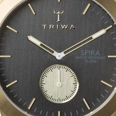 Ash Spira in brushed gold, dark gray combined with a dark brown Swedish organically tanned leather.  www.triwa.com