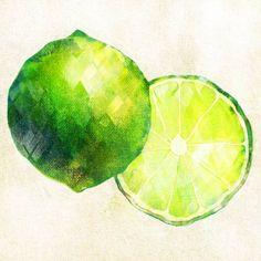 ライム Watercolor Food, Food Illustrations, Food Design, New Art, Paintings, Graphics, Colorful, Fruit, Drawings