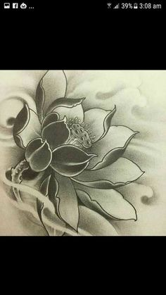 Tattoo flower leg lotus 22 Ideas for 2019 Japanese Lotus, Japanese Flower Tattoo, Japanese Tattoo Designs, Japanese Flowers, Lotus Tattoo Design, Flower Tattoo Designs, Flower Tattoos, Lotus Drawing, Lotus Art