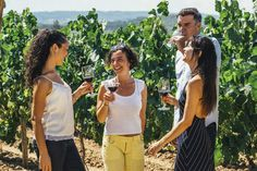 Enjoy a day trip to 2 family wineries and taste 4 excellent wines and 4 types of cava, each paired with gourmet delights. A 4x4 drive takes you through 2,000 year-old vines in the company of a local viticulturist, who will tell you all about winemaking.