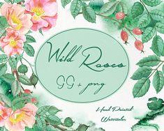 Wild Rose Watercolor Clip Art - 99 PNG - Watercolor Rose Hip - Flower Wreaths Clipart - Briar - Watercolor Splash - Card Design - Fairy Tale
