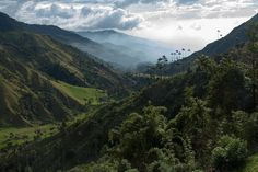 Cocora Valley, Colombia - 20 Breathtaking Places in Latin America You Should Visit Uyuni Bolivia, Costa Rica, Belize, Honduras, Great Places, Places To See, Beautiful World, Beautiful Places, Colombia Travel