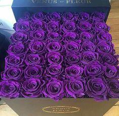 My favorite purple roses!!