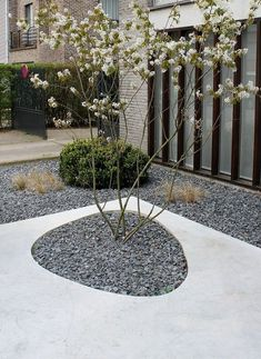 Surprising Unique Ideas: Rock Garden Ideas Planters corner garden ideas home.Garden Ideas Diy Landscaping corner garden ideas home. Japanese Garden Design, Modern Garden Design, Contemporary Garden, Landscape Design, Modern Landscaping, Garden Landscaping, Landscaping Ideas, Small Gardens, Outdoor Gardens