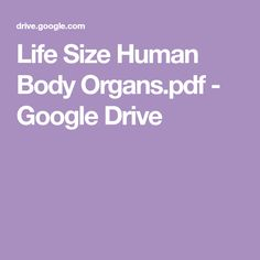 Life Size Human Body Organs.pdf - Google Drive 100 Day Of School Project, 100 Days Of School, School Fun, Science Experiments Kids, Science For Kids, Life Science, 5 Senses Activities, Human Body Activities, Primary Education