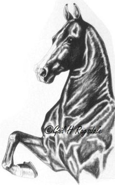 Sold charcoal of American Saddlebred horse.