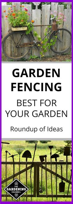 Discover the right garden fence for you with these creative ideas to keep garden pests out of your garden.