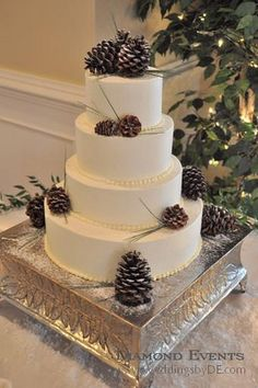 You can save a LOT of money by ordering a plain white cake from the backers and adding your own decorations. Knock out 2 birds with 1 stone and use pinecones (food grade or find ones outside for free and seal them) instead of flowers for the decorations and as a topper!