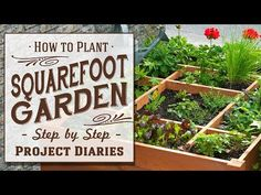 ★ How to: Plant Square Foot Gardening (A Complete Step by Step Guide) - YouTube