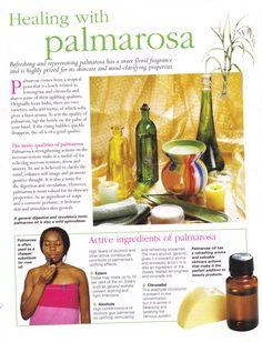 Herbs:  Healing with #Palmarosa.