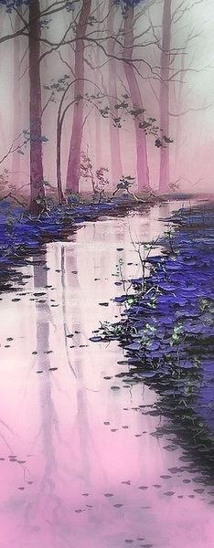 I love it ! The reflection in the water is beautiful, the purple wooden with dying trees is very original nevertheless, unlike the atmosphere is quite strange and frightening ..That could be because of the dusk ? To conclude we have the impression that an otherworldy, there must be witches, ghosts, big spiders .. etc..