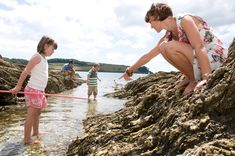 Cornwall is deservedly popular for family holidays - but it needn't cost a fortune with my top 15 free things to do in Cornwall with kids Things To Do In Cornwall, Places In Cornwall, Camel Valley, Ice Cream Farm, Half Term Holidays, South West Coast Path, St Agnes, Walking Routes, Castle Ruins