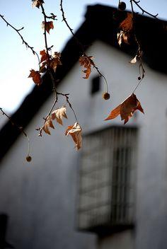 Window by Melinda ^..^ on Flickr.