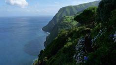 A seaside cliff in the Azores (photo by Alicia Julian) [3648x2056]