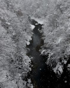 Winter, Yuzawa, Akita, Japan