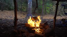 Brewing tea with a pot hanger over a campfire Bushcraft Camping, Camping Survival, Friendship Photography, Mushroom Tea, Fire Photography, Pot Hanger, Brewing Tea, Coffee Is Life, Aesthetic Videos