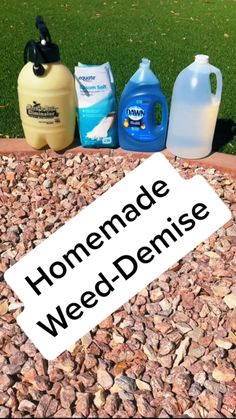 Weeds In Lawn, Garden Weeds, Garden Yard Ideas, Lawn And Garden, Easy Garden, Weed Killer Homemade, Homemade Weed Killers, Do It Yourself Home, Front Yard Landscaping