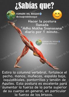 How to Become More Flexible with Yoga in 28 Days - Days Flexible yoga Kundalini Yoga, Yoga Meditation, Health Education, Physical Education, Yoga Anatomy, Yoga Mantras, Sup Yoga, Iyengar Yoga, Yoga Tips
