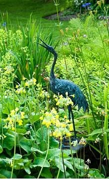 Heron statue beside pond surrounded by Primula grandiflora, Irises, Alchemilla mollis and ferns - Mindrum,