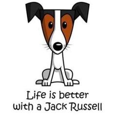 Life is better with a Jack Russell - so true :)