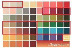 Картинки по запросу цветовая палитра мягкая осень