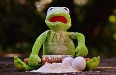 Kermit cooking