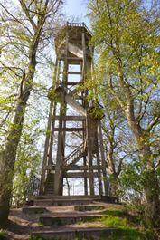 Oranjewoud Bieruma Oostingweg Belvédère: (betekent mooi uitzicht). Andreas Willem Tjaarda liet in 1917 op de 'Berg van Brongerga', een klein heuveltje van bijna tien meter hoog, een houten uitkijktoren bouwen.